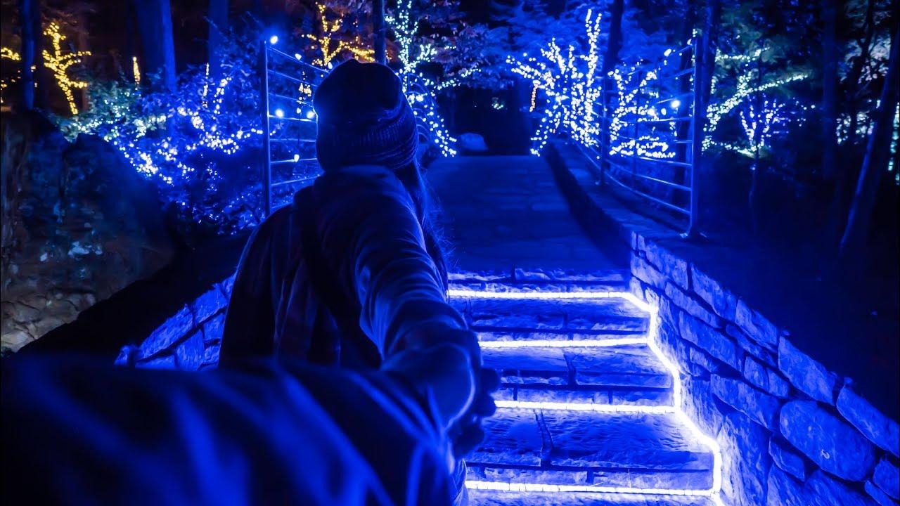 holiday lights at the garvan woodland gardens - Garvan Gardens Christmas Lights