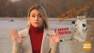 Итоги недели. Жизнь. 16.11.2019