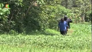 man buried 25 years ago arrested with stolen utensils chicken