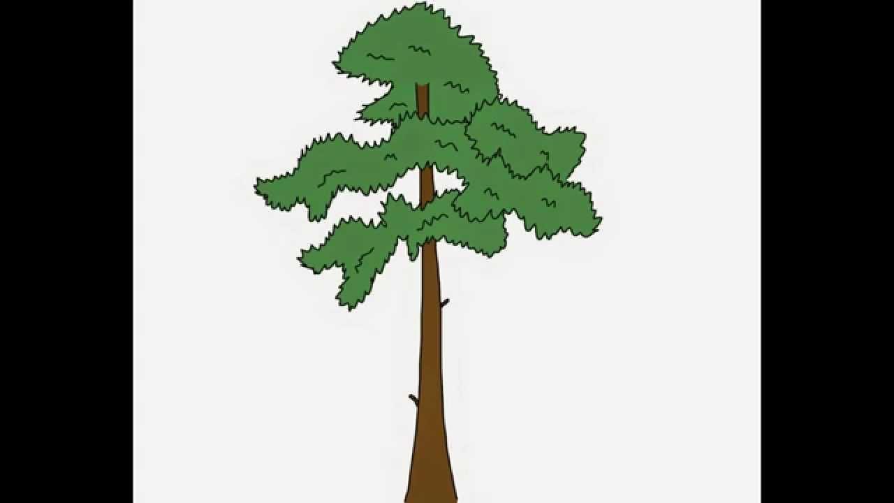 Pine tree How to draw a easy? Как нарисовать просто? Сосна ...