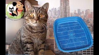 Кот пачкает лапы в лотке. Как укрепить сетку лотка, при помощи лего, чтобы она не продавливалась
