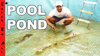 EMPTY POOL Turns MEGA FISH POND!