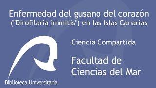 """Enfermedad del gusano del corazón (""""Dirofilaria immitis"""") en las Islas Canarias"""