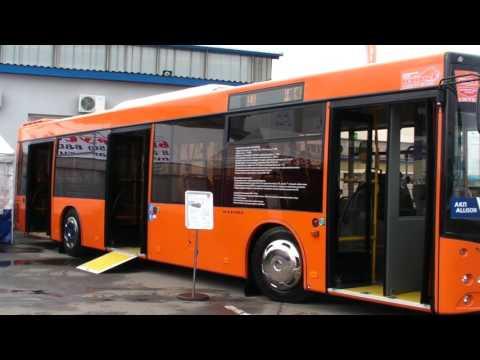 Мир Автобусов