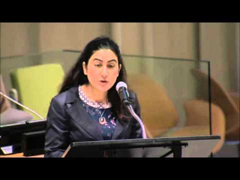 Samar Mezghanni (Writer and Activist), Opening of the ECOSOC Youth Forum 2016