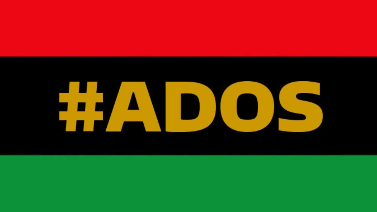 My Thoughts On The #ADOS Discussion