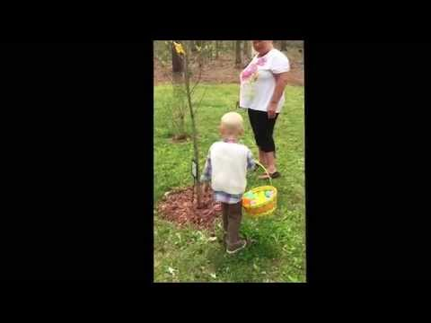2 Year-Old Goes On A Easter Egg Hunt