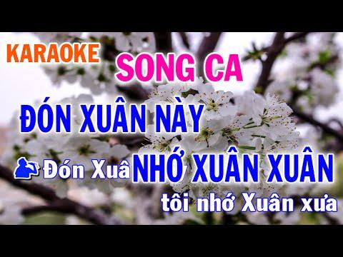 Đón Xuân Này Nhớ Xuân Xưa Song Ca Nhạc Sống l Nhật Nguyễn