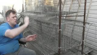 видео Производитель и характеристики брудера для выращивания цыплят Комфорт +