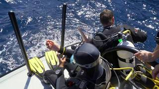 Waitt Expedition in the Azores with the Oceano Azul Foundation