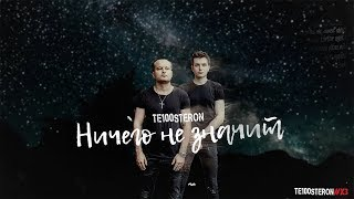 Те100стерон - Ничего не значит (Lyric Video)