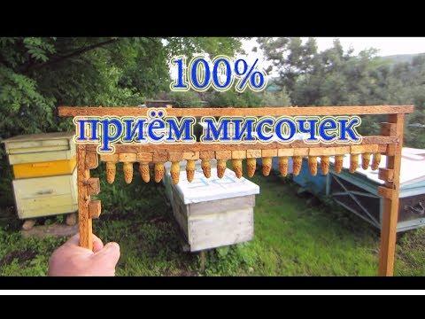 ПИФы Сбербанка - список и краткий обзор паевых фондов
