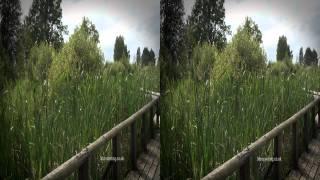 zoo 3d 1080p hd