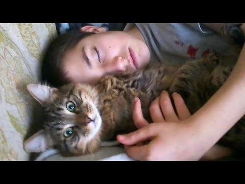 Kids Love Cats!