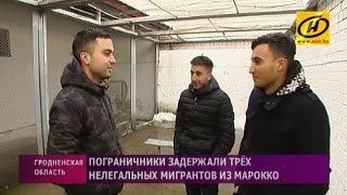 Группа нелегальных мигрантов из Марокко пыталась попасть в Бельгию через белорусско-польскую границу(, 2017-01-04T18:52:53.000Z)