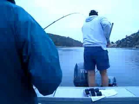 Pardee lake 9 20 08 video 1 kokanee salmon fishing youtube for Lake pardee fishing report