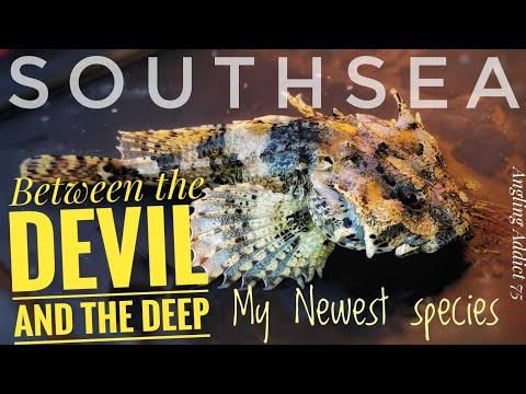 New Species Alert... Devil Fish Or Scorpion?