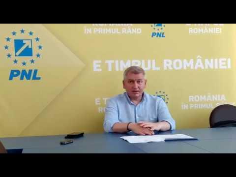 Florin Roman despre