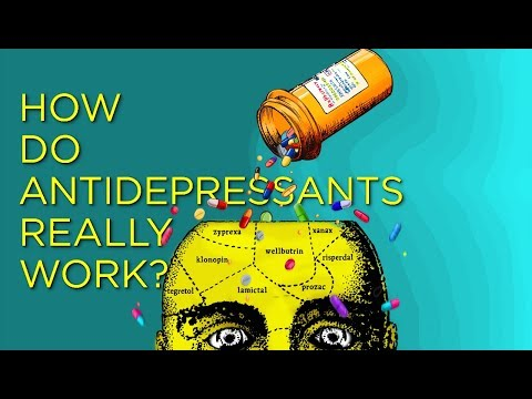 Making Sense of Antidepressants & Health | The History, Logic and Current Science