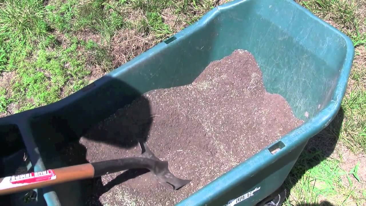 Best way to plant grass seed - Best Way To Plant Grass Seed 4