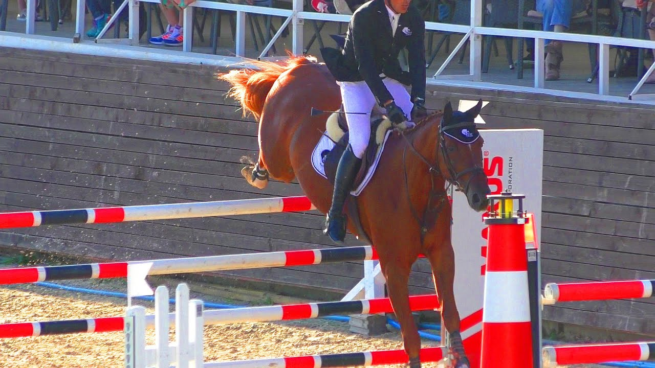 По спорту конному 2018 чемпионат мира