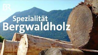 Sägewerk mit neuer Geschäftsidee: Bergwaldholz aus dem Berchtesgadener Land   Unser Land