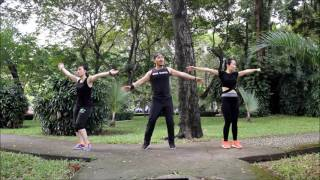 Subeme La Radio (Enrique Iglesias) | Zumba Fitness 2017 | AHH Team