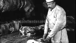 Filières du boeuf et du porc aux USA