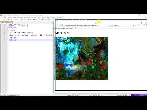 Image Tag In Html With Example | By Bhanu Priya