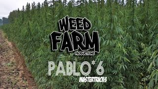 [MASTER TRACK *6] PABLO CARROUCHÉ / SUDDAK (Weed Farm Productions)