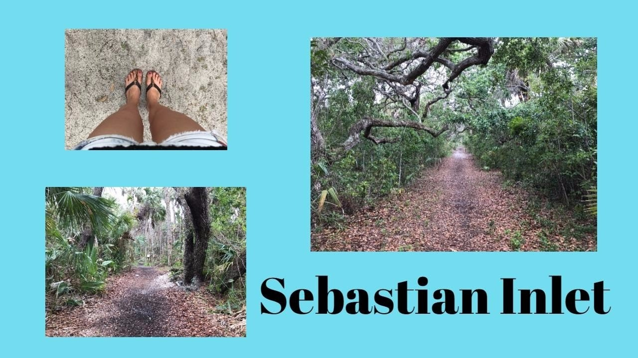 Sebastian Inlet - YouTube