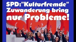 SPD Chef :