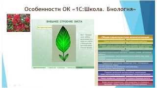 Использование образовательных комплексов «1С:Школа» на уроках биологии
