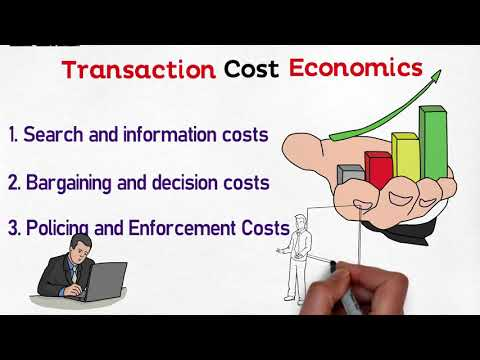 MBA 101 Corporate Governance, Transaction Cost Economics Theory