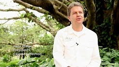 Cayuga Collection - Sustainable Luxury Hotels & Lodges in Costa Rica & Nicaragua