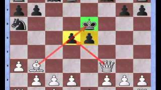Bastiaan versus chessmaster 9000 / fried liver (annotation 1)