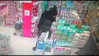 سرقة صيدليات النهدى  اما كل من داخل الصيدلية