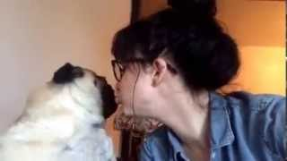 Pug Resists Girl's Kisses