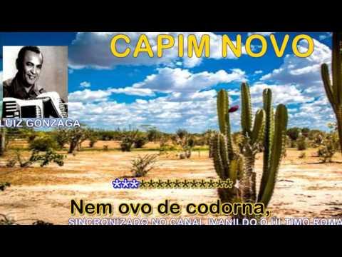 Capim Novo  - Luiz Gonzaga  - karaoke