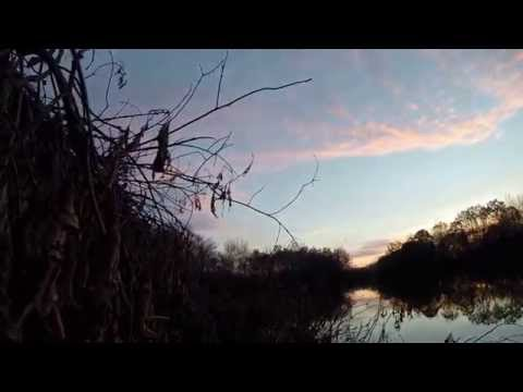 Old Hickory 2014  Black Powder Shotgun Duck Hunt