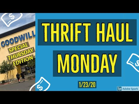 """GOODWILL OUTLET """"THE BINS"""" THRIFT HAUL 