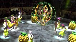 Санкт Петербург цирк Чинизелли,шоу Запашных 20 4