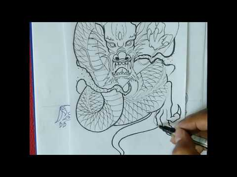 How to draw a dragon-dragon drawing