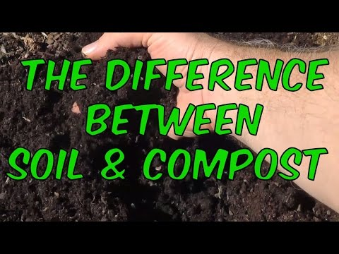 Soil Vs Compost What S The Difference
