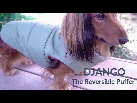 DJANGO - The Reversible Puffer Dog Coat - Sage Green