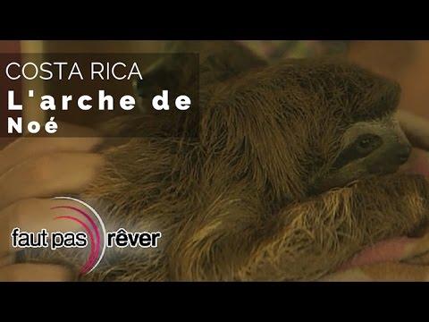 Costa Rica, le paradis vert  l'arche de Noé reportage complet  Faut Pas Rêver