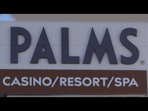 The Palms - Fresh, New & Reinvented For 2019