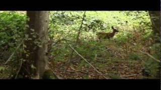 BC's Huge Gamble - short film - Enbridge Northern Gateway Pipeline