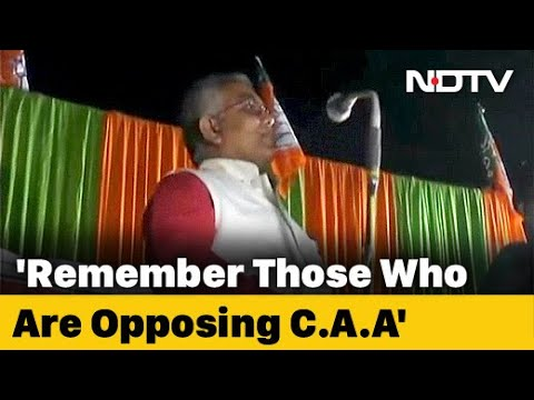 """""""Damaging Property? Our Governments Shot Them Like Dogs"""": BJP Leader"""