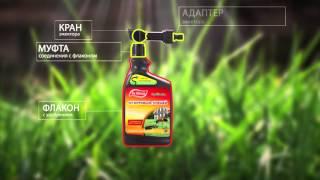 видео Средства - инсектициды для инъекций от короеда